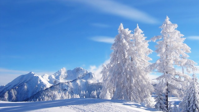 Beautiful Winter Wallpapers | Beauty of Winter season | Nature ...